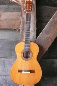 Vicente Tatay flamenco gitaar