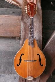 Blonde Kay A-style Mandoline begin jaren '50