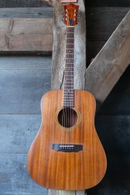 Guild D25m Bluegrass  1973