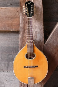 Levin Flattop mandoline Rosalie