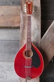 levin flattop mandola 1927 model 475