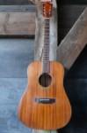 Guild D25m Bluegrass 1973