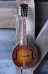 Gibson Mandoline A50