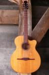 hybride jazz gitaar